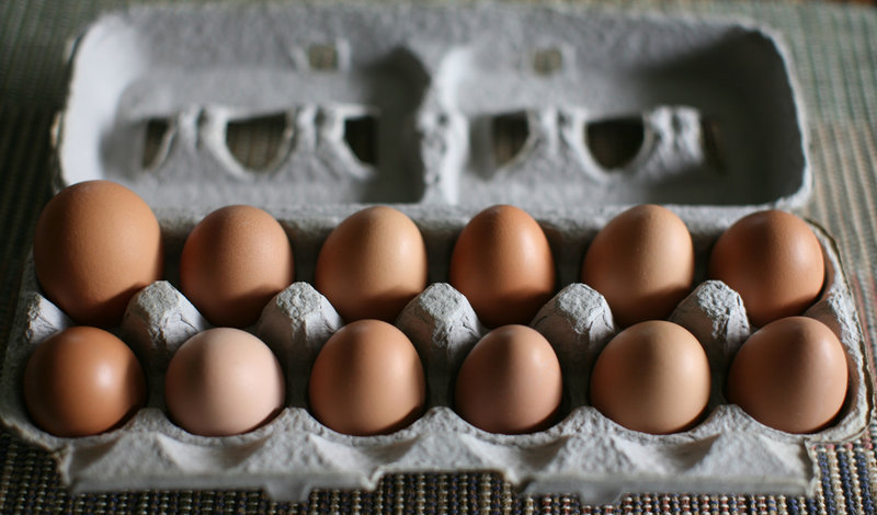 Fresh Farm Eggs - Know How To Store & Keep Them Fresh Longer