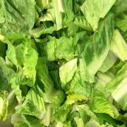 Chopped Romaine Lettuce